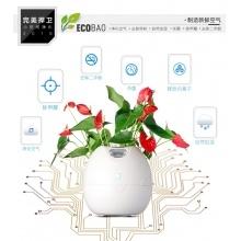 ECOBAO小型办公室家用除甲醛PM2.5除菌负离子免换滤网空气净化器